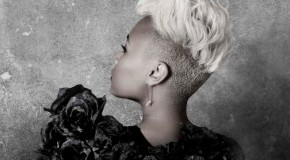 Emeli Sandé – Our Version Of Events (Virgin, 2012)