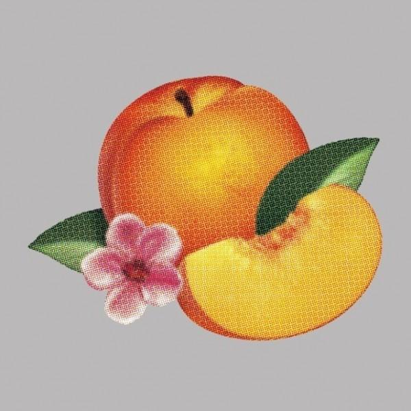131924_phoenixfruit2_principal