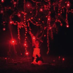 [crítica] Sophie Hunger – The Danger Of Light (Two Gentlement/Altafonte, 2013)