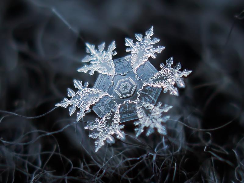 Alexey-Kljatov-copos-de-nieve-1