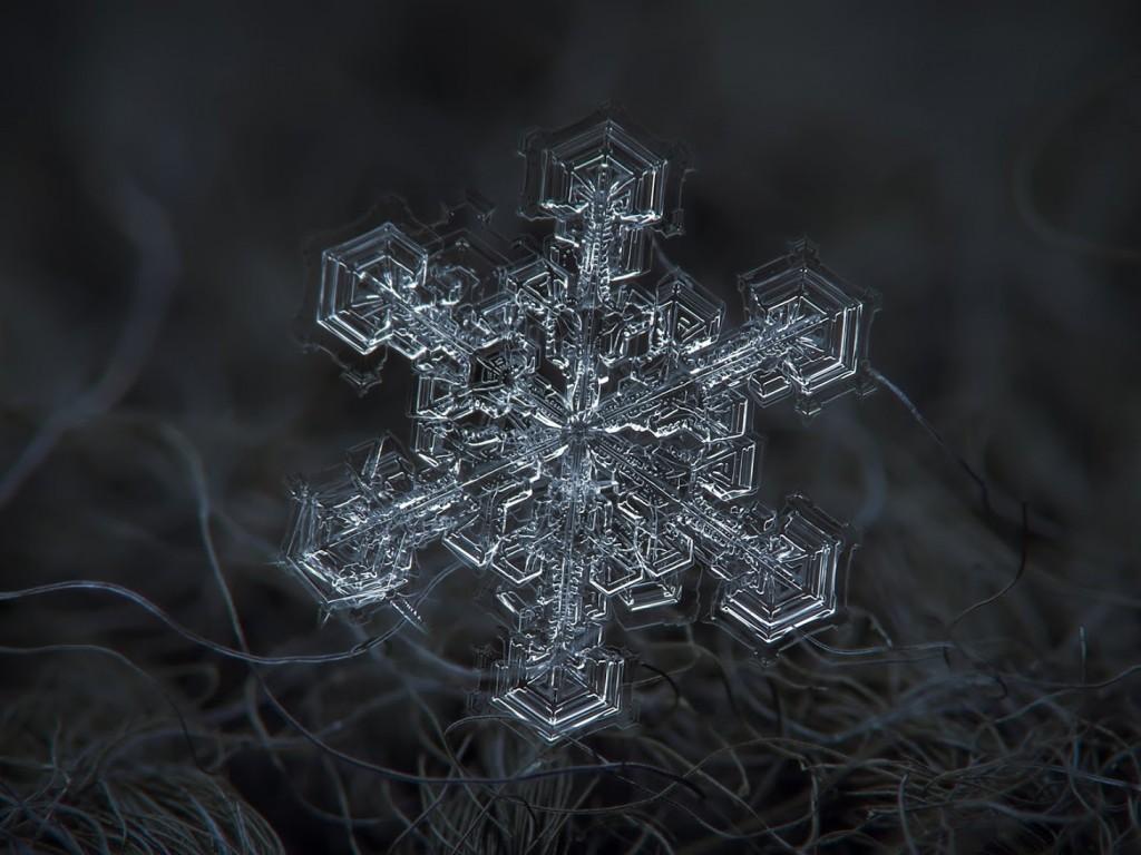 Alexey-Kljatov-copos-de-nieve-3