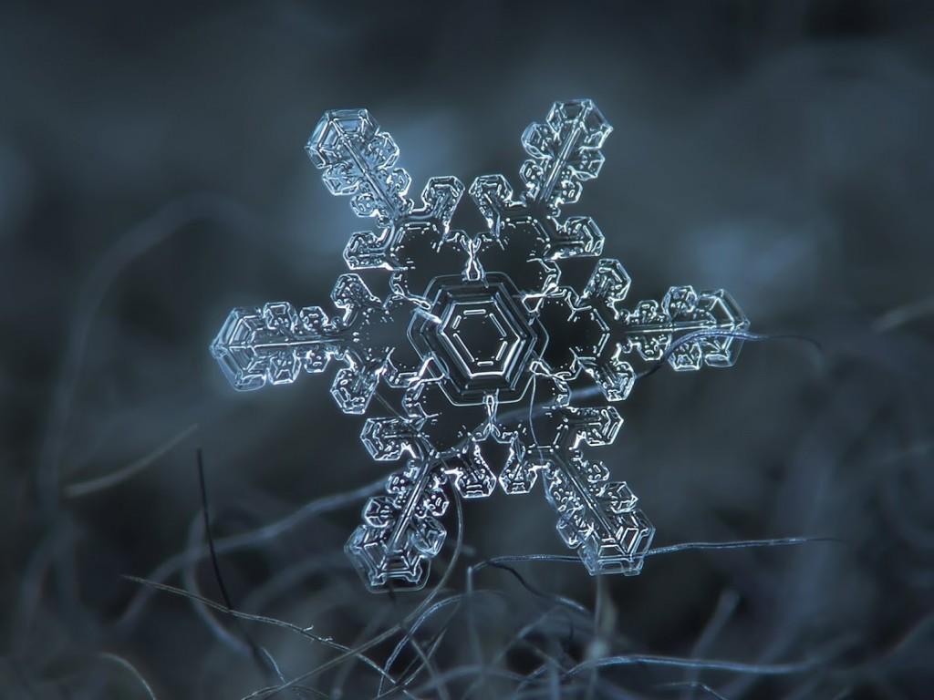 Alexey-Kljatov-copos-de-nieve-4