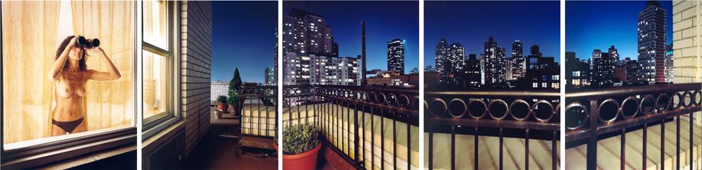 david-hilliard-fotografia-panoramica-Looker