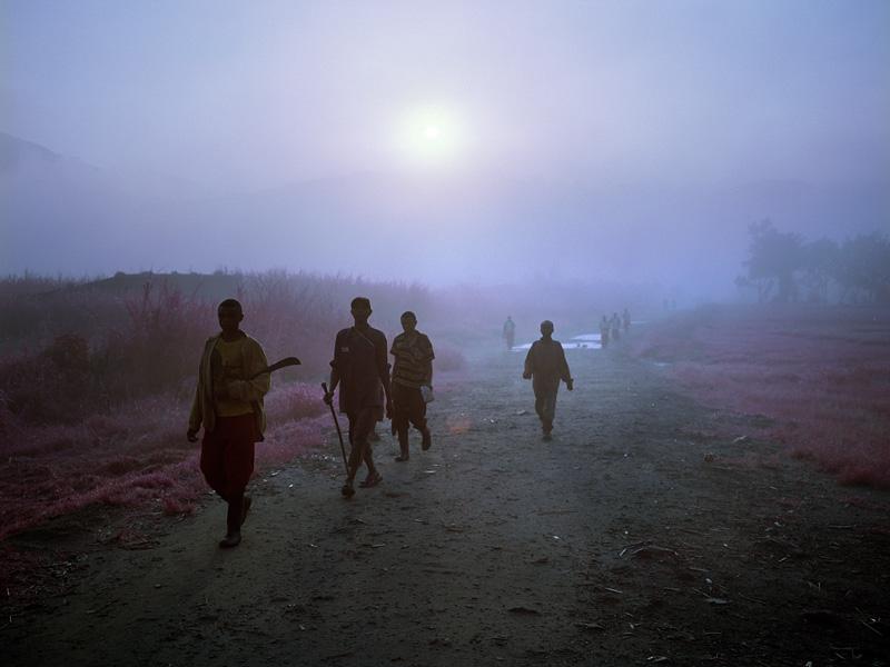 richard-mosse-pelicula-infrarroja-fotografía-guerra-documental-22