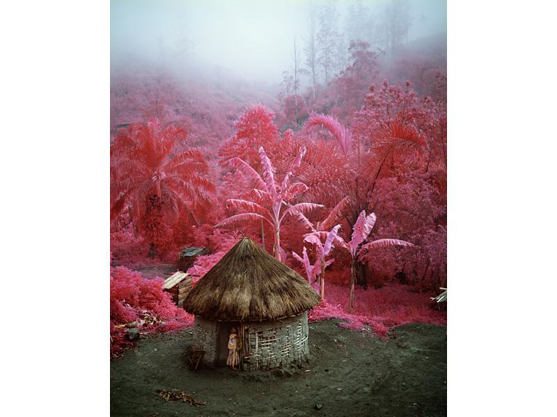 richard-mosse-pelicula-infrarroja-fotografía-guerra-documental-8
