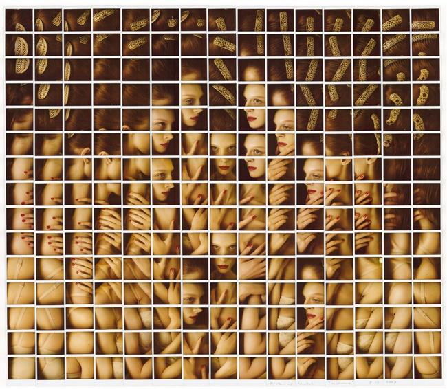 Fotografía - Maurizio Galimberti Mosaicos polaroid - olga-mr