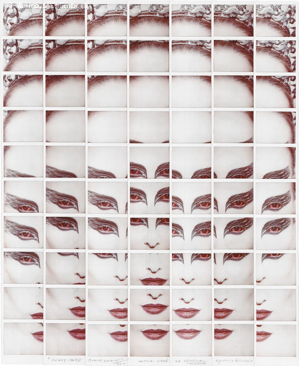 Fotografía - Maurizio Galimberti - Mosaicos polaroid - cisne negro