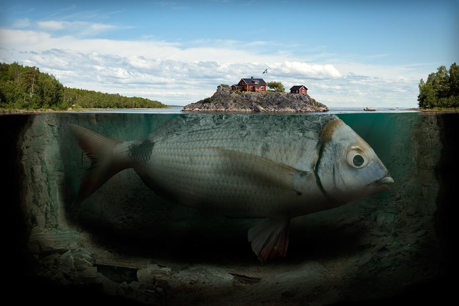 Fotografía - Erik Johansson - fisk