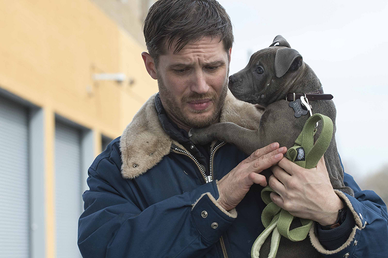 Crítica - La Entrega - The Drop - Tom Hardy, Bob