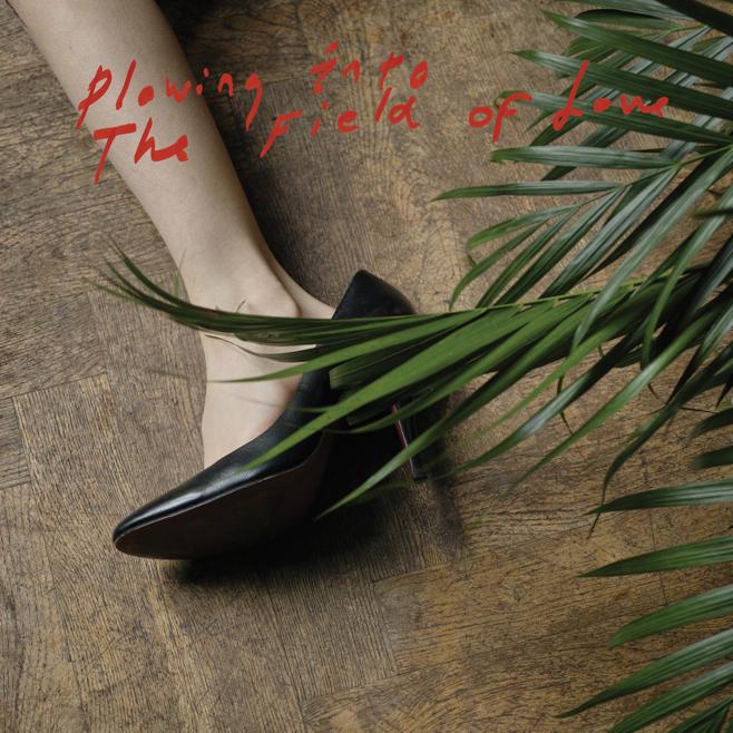 Críticas de discos - Iceage - Plowing Into The Field Of Love
