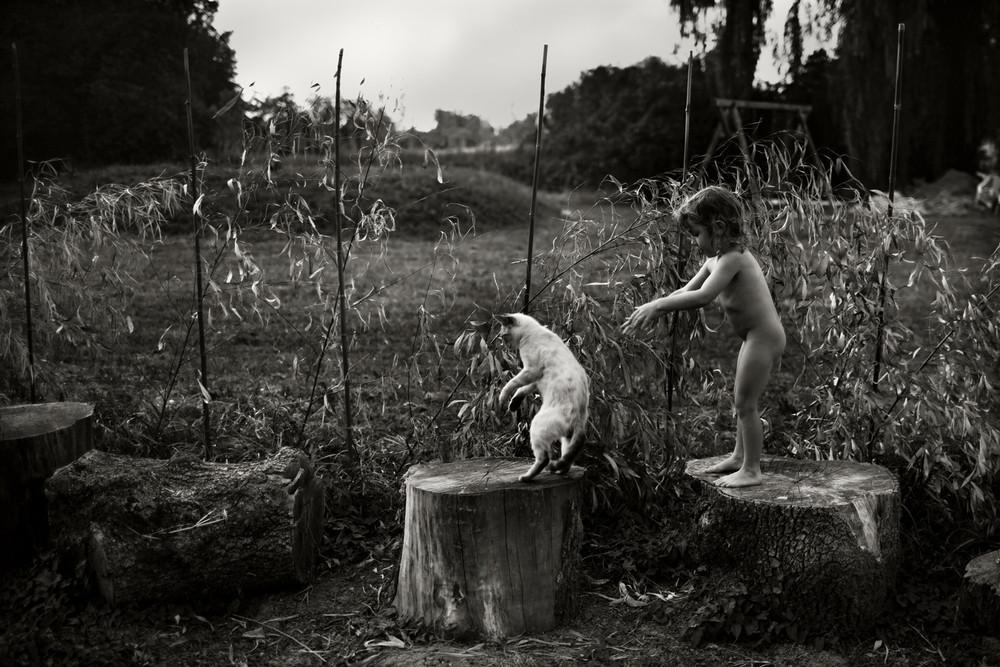 Fotografía - Alain Labolle 12