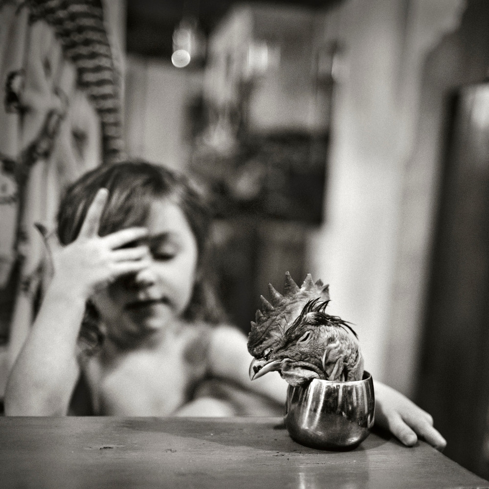 Fotografía - Alain Labolle 19
