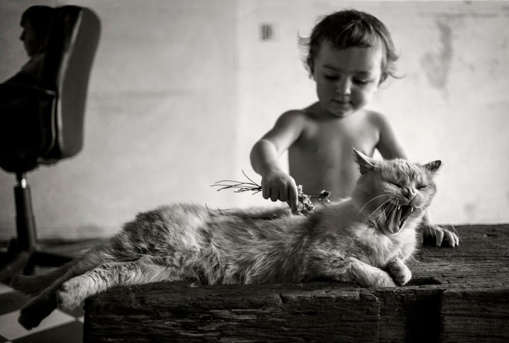 Fotografía - Alain Labolle 9