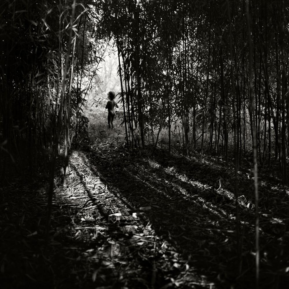 Fotografía - Alain Labolle 18