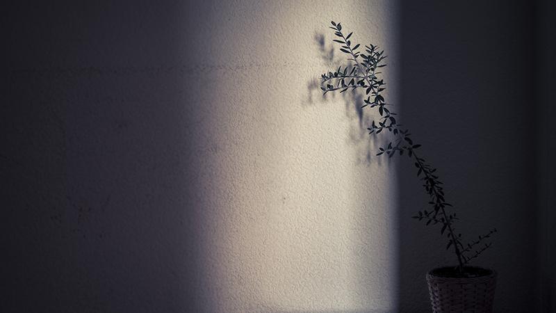 Fotografía Metanoia, Cristiana Gasparotto 13