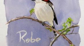 Robe, Lo que aletea en nuestras cabezas: el paso definitivo (por ahora)